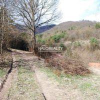 Rekreačný pozemok, Žarnovica, 38007 m²