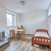 2 izbový byt, Bratislava-Ružinov, 21 m², Kompletná rekonštrukcia