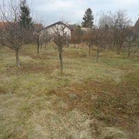 Pre rodinné domy, Nový Tekov, 675 m², Pôvodný stav