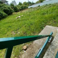 Pre rodinné domy, Nitra, 644 m²