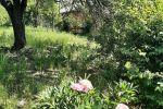 NA predaj pekná záhrada DOlný Urban, Levice