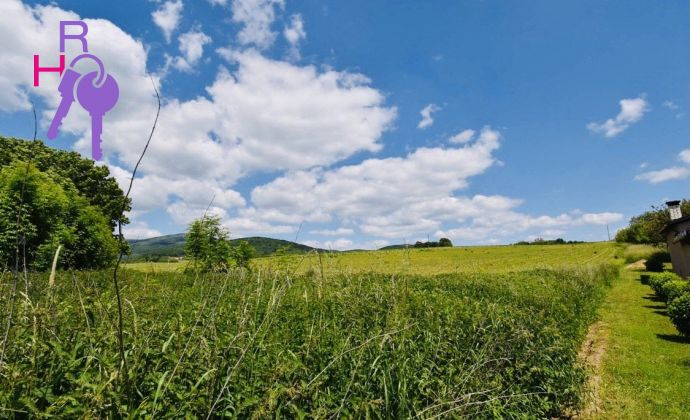 Veľký pozemok v obci Bzince pod Javorinou, 7366 m2