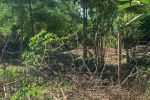 Stavebný pozemok v obci Blažov !!!!