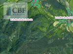 Ponúkame na predaj lesné pozemky v Muránskej Lehote, okr. Revúca