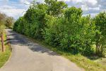 orná pôda - Veľké Zlievce - Fotografia 4