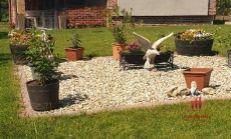 Záhrada s domčekom na predaj