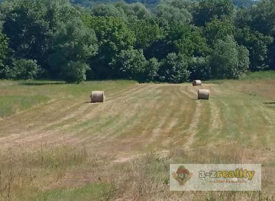 Ponúkame na predaj pozemok v Radvani nad Dunajom