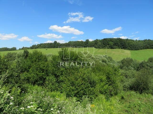 Pozemok pre RD-Predaj-Rosina-155 000 €