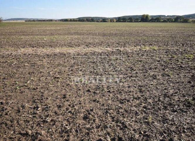 orná pôda - Šúrovce - Fotografia 1