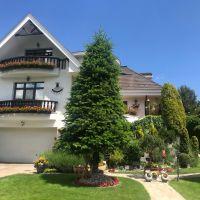 Rodinný dom, Bratislava-Rača, 1280 m², Pôvodný stav