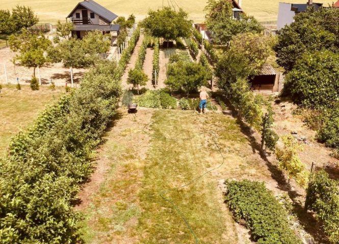 chata, drevenica, zrub - Virt - Fotografia 1
