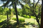 záhradná chata - Bratislava-Rača - Fotografia 3