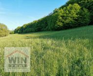 Na predaj pozemky - trvalý trávnatý porast, Krupina,  Červená Hora