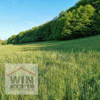 Trvalý trávnatý porast, Krupina, 11270 m²