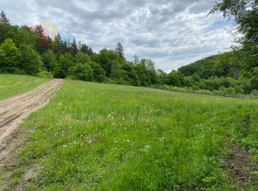 Krásny rekreačný pozemok s potokom, 11.510 m2, Bolešov (okr. Ilava) 21,- EUR/m2