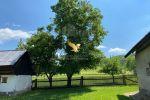 Vidiecky dom - Pliešovce - Fotografia 27