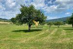 Vidiecky dom - Pliešovce - Fotografia 4