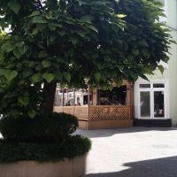 Reštauračné, Levice, 1 m², Pôvodný stav