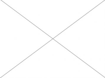 Predaj záhrada s vinohradom, Nitra - Šúdol.