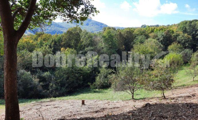PREDAJ: Pozemok pre výstavbu rodinného domu, 820 m2, Nová Baňa - Viničná cesta