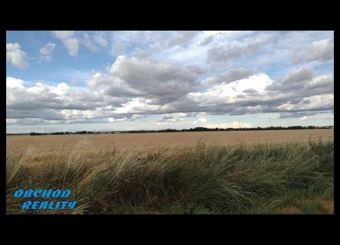 orná pôda - Trnava - Fotografia 1