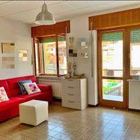 2 izbový byt, 50 m², Novostavba