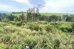 iný stavebný pozemok - Liptovský Ondrej - Fotografia 6