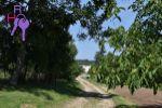záhrada - Bobot - Fotografia 3