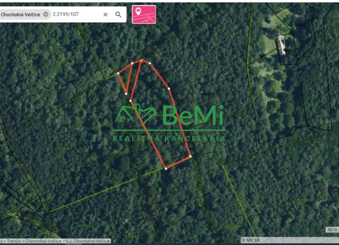lesné pozemky - Chocholná-Velčice - Fotografia 1