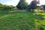 záhrada - Gregorovce - Fotografia 6