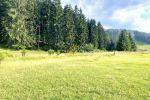 trvalý trávnatý porast - Pavčina Lehota - Fotografia 5