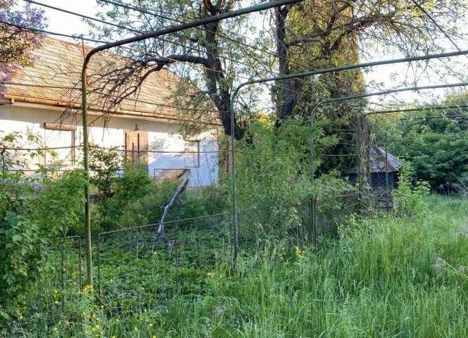 Rodinný dom - Kováčovce - Fotografia 1