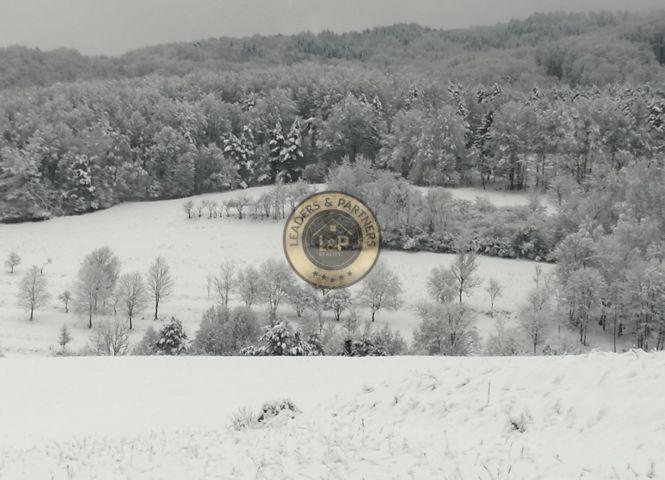 rekreačný pozemok - Valaská Belá - Fotografia 1