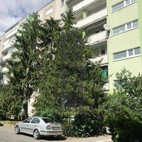 1 izbový byt, Bratislava-Ružinov, 43 m², Kompletná rekonštrukcia