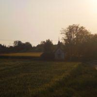 Rekreačný pozemok, Vráble, 10443 m²