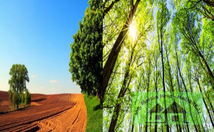 Les a orná pôda v obci Kozárovce - Ostrovice