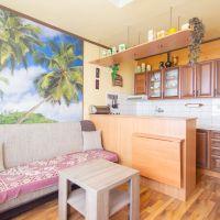 1 izbový byt, Michalovce, 36 m², Čiastočná rekonštrukcia