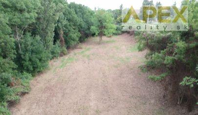 Exkluzívne APEX reality investičný pozemok v centre obce Bučany, 2945 m2