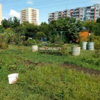 Záhrada, Trnava, 250 m²