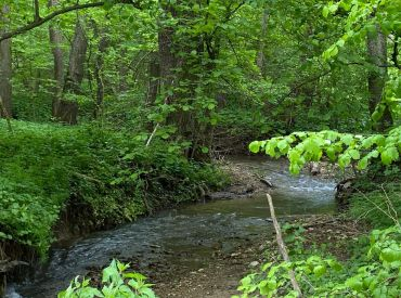 Krásny rekreačný pozemok s potokom, 5755 m2, Bolešov (okr. Ilava)