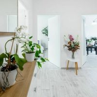 3 izbový byt, Košice-Západ, 65 m², Kompletná rekonštrukcia