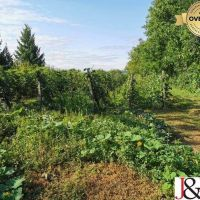 Záhrada, Levice, 2466 m²
