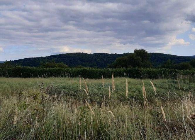 rekreačný pozemok - Jabloňovce - Fotografia 1