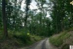rekreačný pozemok - Jabloňovce - Fotografia 4