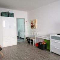 1 izbový byt, Trenčín, 29 m², Čiastočná rekonštrukcia