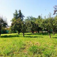 Záhrada, Nitra, 700 m²