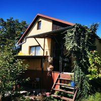 Záhradná chata, Nové Mesto nad Váhom, 45 m², Pôvodný stav