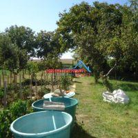 Záhrada, Levice, 268 m²