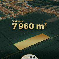 Orná pôda, Voderady, 7960 m²