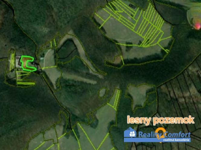 lesné pozemky - Trenčianske Mitice - Fotografia 1